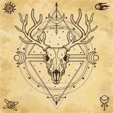 Мистическое изображение черепа horned олень, священная геометрия, символы луны иллюстрация штока