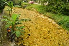 Мистическое река на трассе Encantau Camin в совете Llanes Природа, перемещение, ландшафты, леса, фантазия стоковые изображения