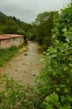 Мистическое река на трассе Encantau Camin в совете Llanes Природа, перемещение, ландшафты, леса, фантазия стоковое изображение rf