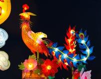 Мифический бессмертный phoenix Стоковая Фотография RF