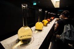 Милан 2015 экспо Италия 106 Стоковые Фотографии RF