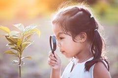 Милая азиатская девушка маленького ребенка смотря через лупу Стоковые Изображения RF