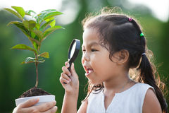 Милая азиатская девушка маленького ребенка смотря через лупу Стоковое Изображение