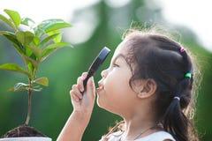 Милая азиатская девушка маленького ребенка смотря через лупу Стоковые Изображения