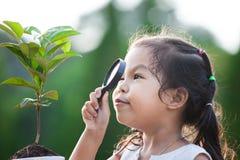 Милая азиатская девушка маленького ребенка смотря через лупу Стоковое фото RF
