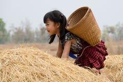 Милая азиатская девушка с корзиной Стоковое фото RF