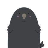 Милая большая тучная ворона Стоковые Изображения RF