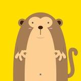 Милая большая тучная обезьяна Стоковые Фото