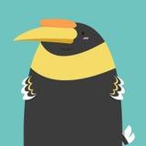 Милая большая тучная птица птицы-носорог Стоковые Изображения