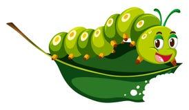 Милая гусеница жуя зеленые лист Стоковые Фото