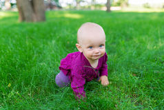 милая девушка дня меньшее лето лужка Стоковая Фотография RF