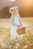 Милая девушка ребенка на поле стоцвета с корзиной цветков Стоковые Фотографии RF