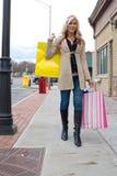 милая женщина покупкы стоковое фото rf