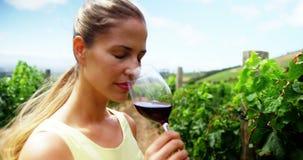 Милая женщина усмехаясь и пахнуть красным вином видеоматериал