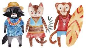 Милая иллюстрация акварели с котом, енотом и обезьяной в стиле лета Стоковые Фото
