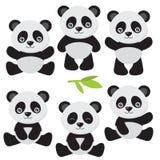 Милая иллюстрация вектора панды Стоковые Изображения