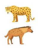 Милая иллюстрация вектора стоек ягуара и гиены африканские животные Стоковое Изображение