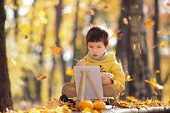 Милая картина мальчика в золотом парке осени стоковое фото rf