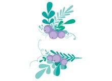 Милая комбинация вектора с нарисованными вручную флористическими элементами и ветвями Стильный простой дизайн также вектор иллюст Стоковая Фотография RF