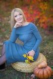 Милая красивая женщина дамы девушки с светлыми волосами в стильном платье при шляпа стоя в лесе осени Стоковые Фотографии RF