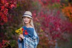 Милая красивая женщина дамы девушки с светлыми волосами в стильном платье при шляпа стоя в лесе осени Стоковое Изображение RF