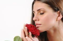 Милая красивая красная роза запаха женщины на белой предпосылке Стоковое фото RF
