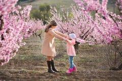Милая красивая стильная одетая девушка брюнет при мама матери стоя на поле персикового дерева весны молодого с пинком стоковые фотографии rf