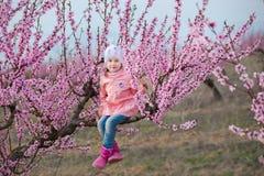 Милая красивая стильная одетая девушка брюнет при мама матери стоя на поле персикового дерева весны молодого с пинком стоковое изображение rf