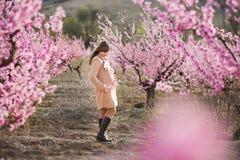 Милая красивая стильная одетая девушка брюнет при мама матери стоя на поле персикового дерева весны молодого с пинком стоковое фото rf