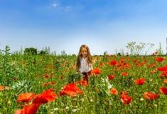 Милая маленькая девочка играя в красных маках field летний день, красота Стоковое фото RF