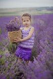Милая маленькая девочка сидя в поле лаванды в славном лодочнике шляпы с фиолетовым цветком на ем стоковая фотография
