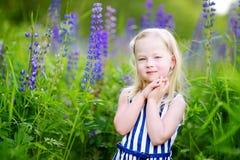 Милая маленькая девушка preschooler имея потеху в красивом зацветая поле lupine Стоковые Изображения RF