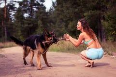 Милая немецкая овчарка девушки и собаки Стоковое Изображение RF