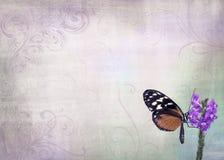 Милая предпосылка бабочки Стоковое Изображение RF