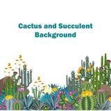 Милая предпосылка вектора succulents и кактусов Стоковая Фотография