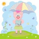 Милая свинья идя с зонтиком Стоковое Фото