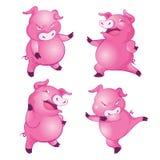 Милая свинья a Стоковые Изображения RF