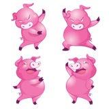 милая свинья Стоковые Фото