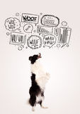 Милая собака с пузырями лаять Стоковые Фотографии RF