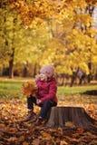 Милая усмехаясь девушка ребенка на прогулке сидя с букетом листьев осени Стоковое Изображение