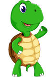 Милая черепаха шаржа Стоковое фото RF