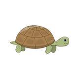 Милая черепаха шаржа Стоковые Изображения