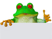 Милая лягушка O'kay шаржа иллюстрация вектора
