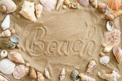 Мидии в песке Стоковые Изображения