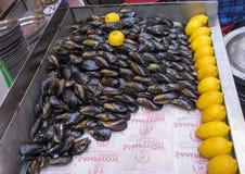 Мидии и лимон в Стамбуле стоковое изображение