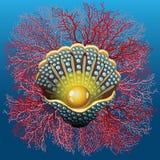 Мидия и коралл жемчуга бесплатная иллюстрация
