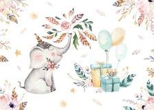 Милое животное питомника слона младенца изолировало иллюстрацию для детей Богемская семья слона леса boho акварели