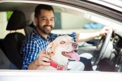 Милое катание собаки в сиденье пассажира Стоковые Фотографии RF