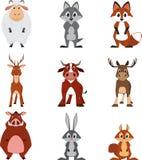 Милое красочное экзотическое собрание животных Стоковая Фотография RF