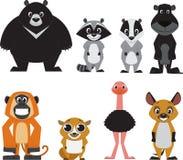 Милое красочное экзотическое собрание животных Стоковые Фотографии RF